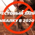 весенний запрет на рыбалку 2020