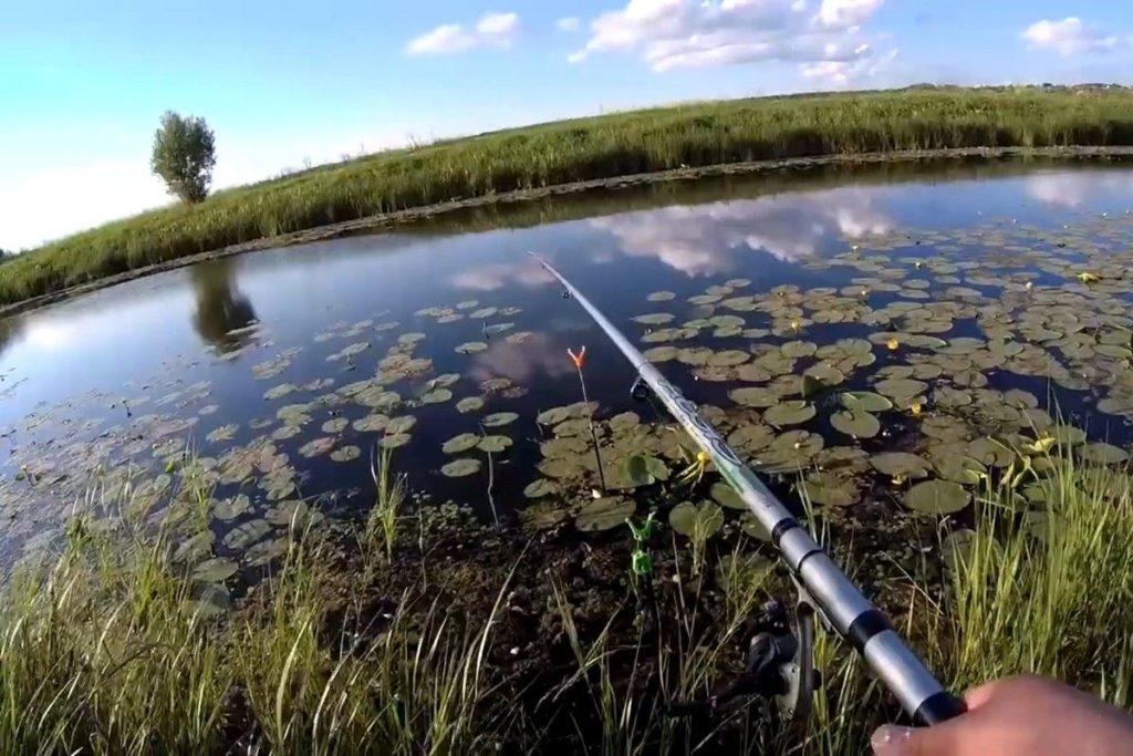 Как сделать из манки болтушку для рыбалки