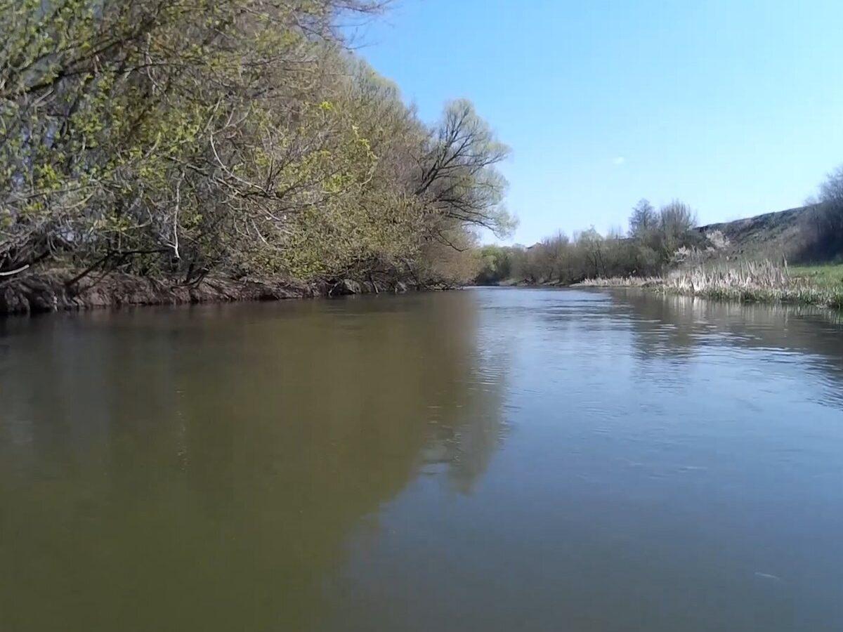 Рабочая наживка для рыбалки на реке: мелкая рыба не подходит, а крупная ловится чаще