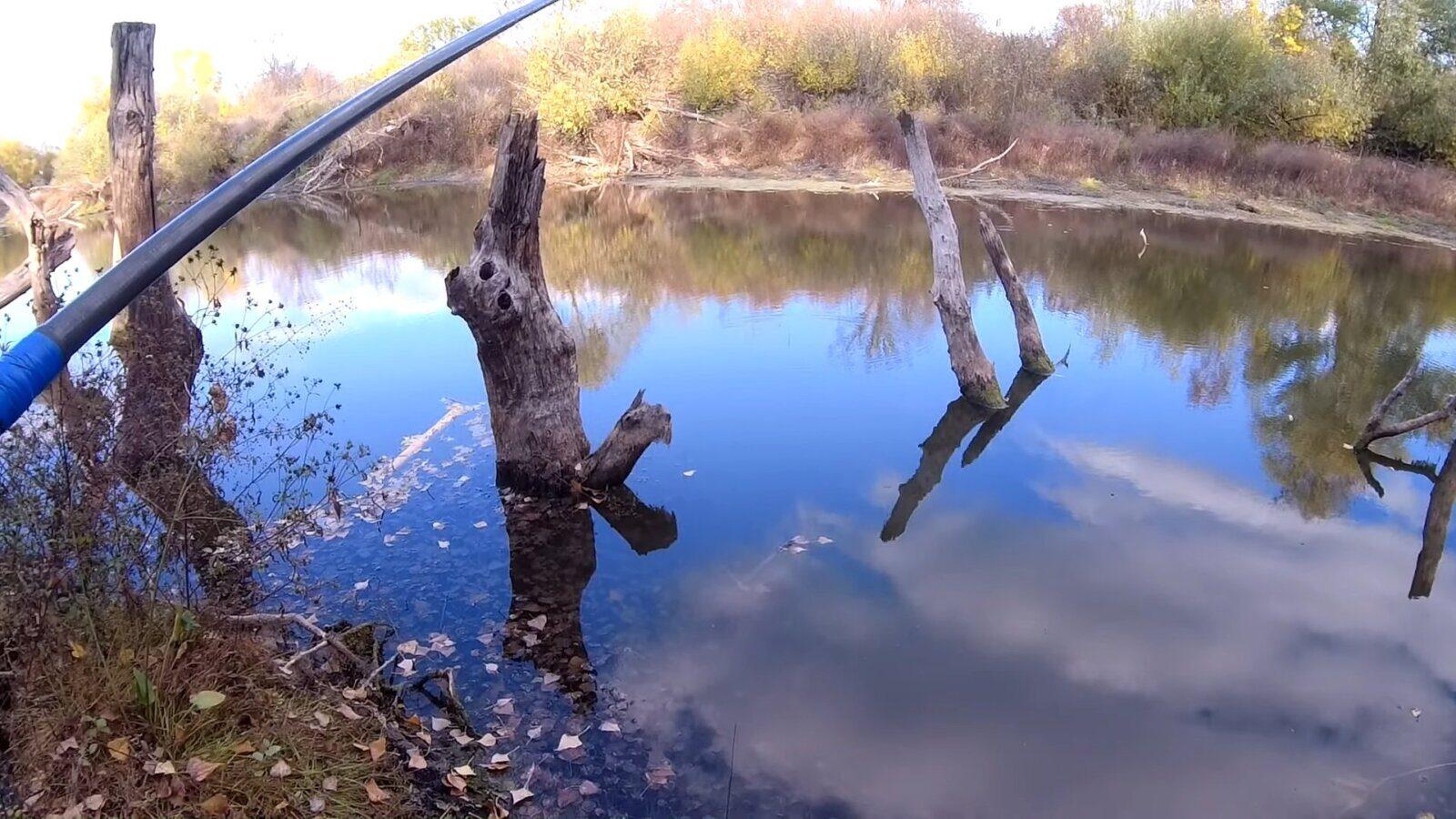 Ловля карася в октябре: рассказываем в какое время ловить и где искать