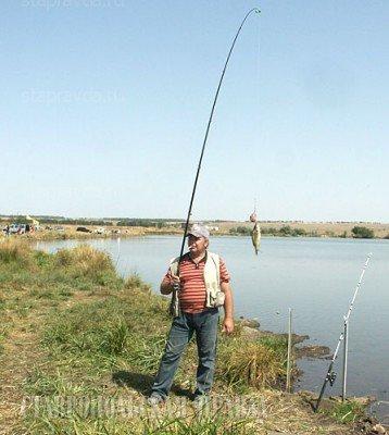 500 кг рыбы выудили на Кубке Ставрополья по спортивной ловле карпа