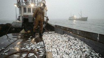 Рыболовецкое судно затонуло у берегов Аргентины, пропали два человека