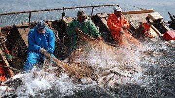 Эстония и Россия утвердят квоты на вылов рыбы в приграничных озерах