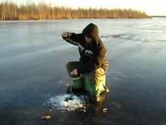 В Коми состоится республиканский фестиваль по спортивной рыбной ловле на мормышку
