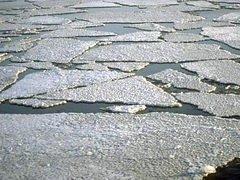 В Приморском крае спасен рыбак-любитель, его машина уплыла на льдине