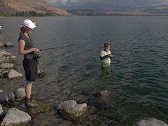 Срок запрета на ловлю рыбы в Кинерете (Израиль) может быть сокращен