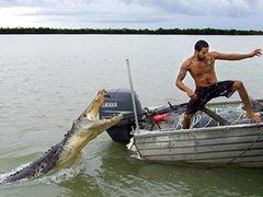 Австралийский рыбак 40 минут боролся с крокодилом
