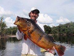 В Бразилии пойман рекордный экземпляр павлиньего окуня