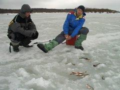 Сотрудники УФСИН по Рязанской области состязались в подледной ловле