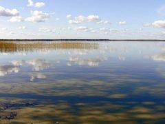 В Татарстане возбуждено уголовное дело в отношении смельчака, решившего половить рыбку в запретной зоне