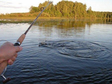 У новосибирских рыбаков расширилась акватория бесплатной рыбалки