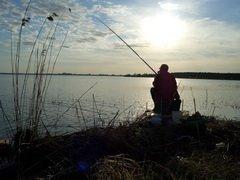Проект закона о рыболовстве вынесен на общественную экспертизу
