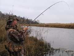 пруд под платную рыбалку
