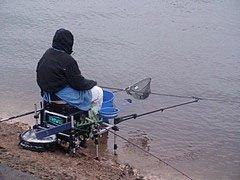В Черновцах больше нельзя ловить рыбу