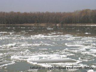 В Житомирской области утонули двое рыбаков
