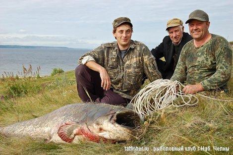 Рыбалка в России