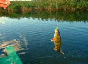 рыбалка в башкирии