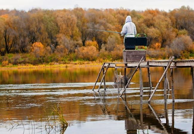 Ловля карася осенью на поплавочную удочку
