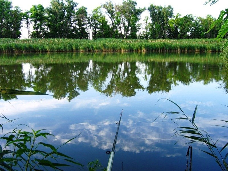озеро Тетеево Татарстан