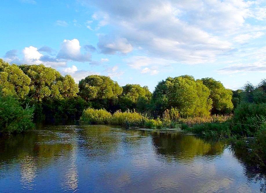 Река Свияга
